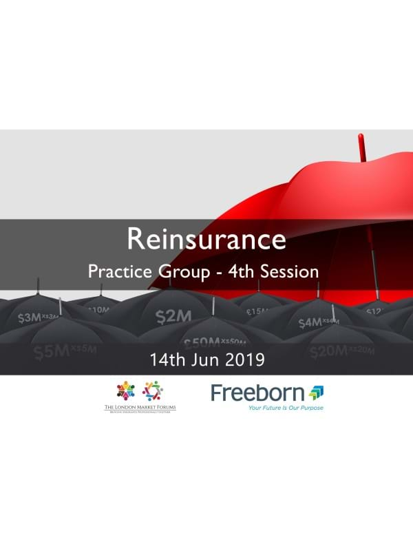 Reinsurance Practice Group